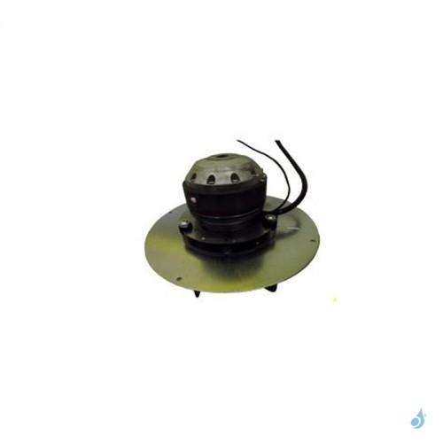 Extracteur fumées EBM-R2E180-cg82-12 pour modèle Ravelli