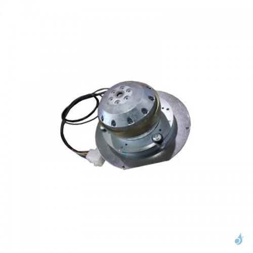Extracteur fumées étanche EBM R2E150-AN9163 pour modèle Ravelli